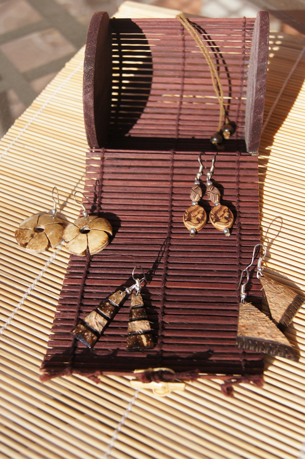 Hema_nuts_about_coconut_earings1