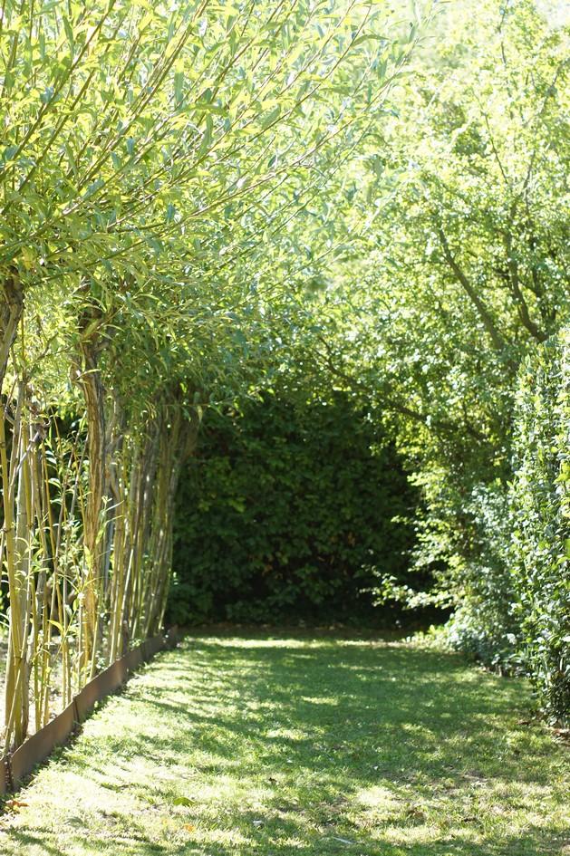 Hema_le_jardin_de_l_alchimiste11