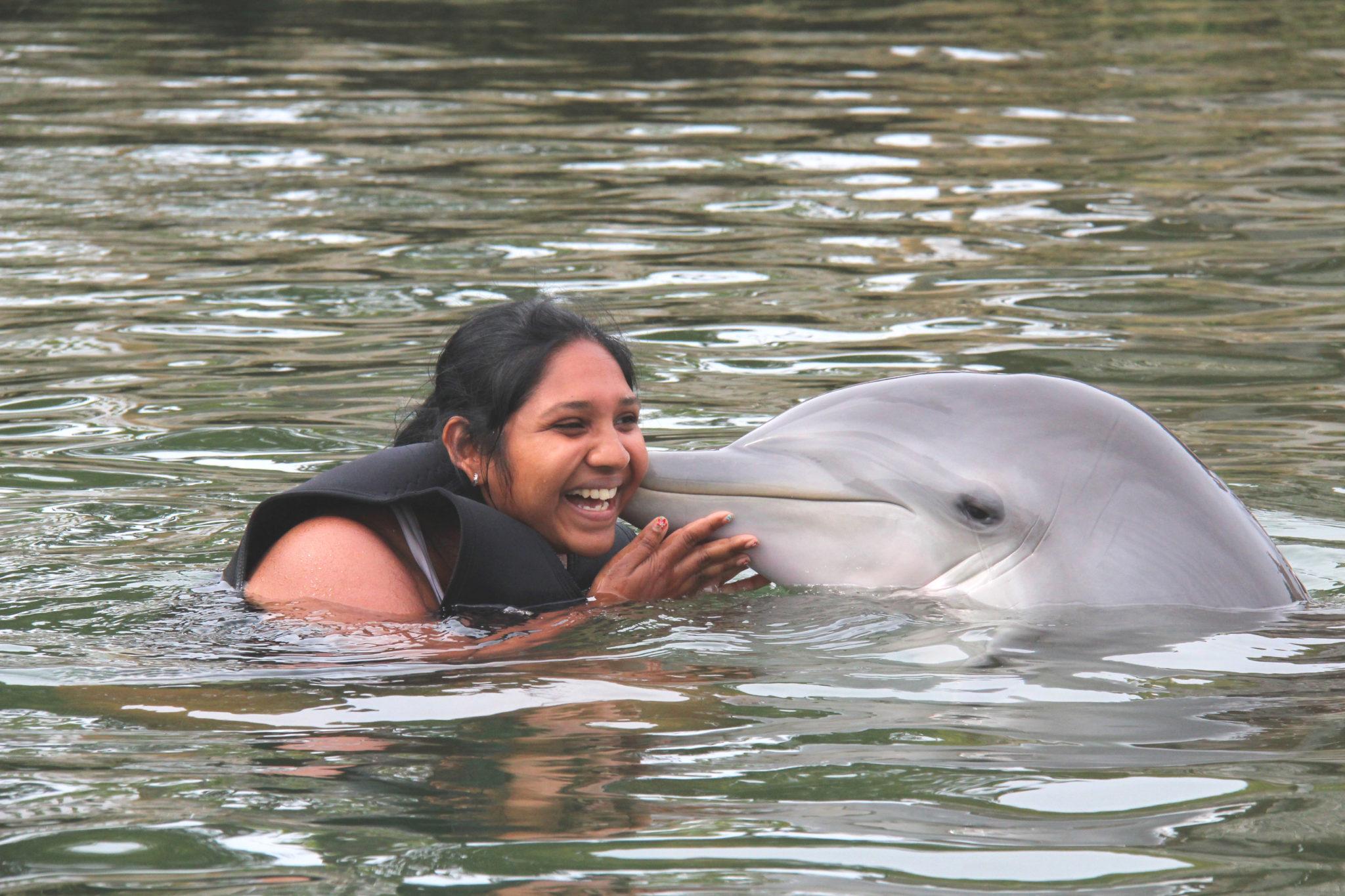 Nager avec les dauphins @ Dolphin Plus, Floride (ou réaliser un rêve d'enfant)
