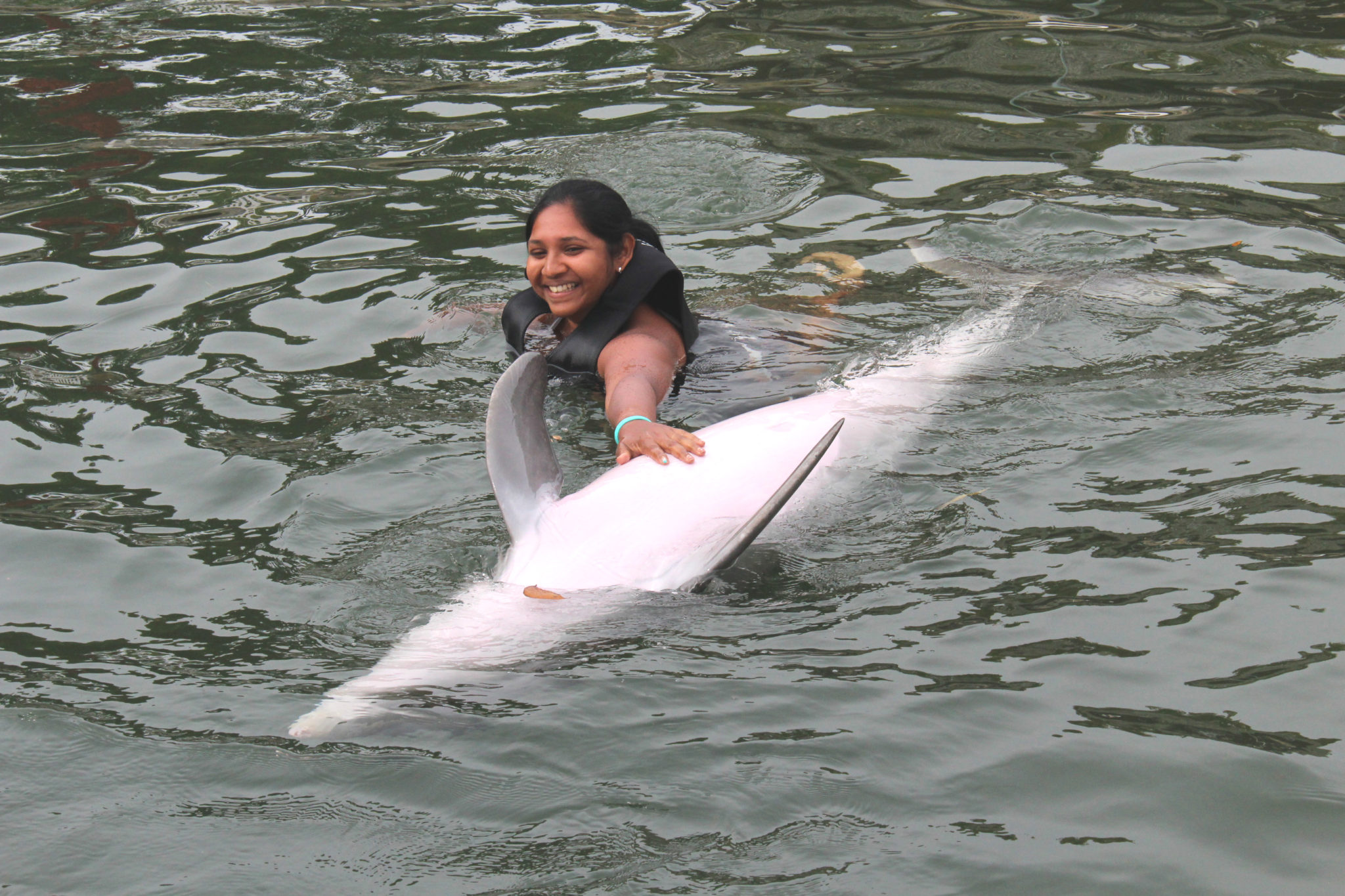Hema_nager_avec_les_dauphins_dolphin_plus11