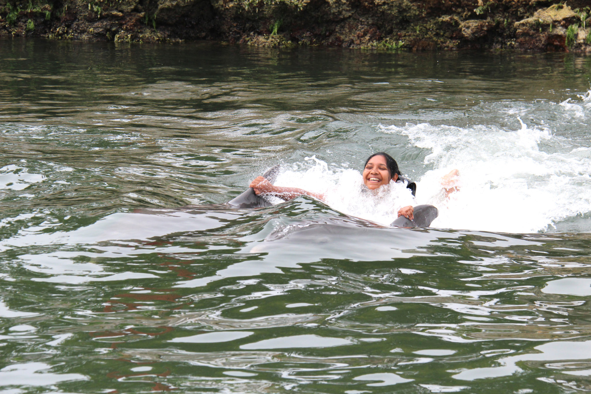 Hema_nager_avec_les_dauphins_dolphin_plus16