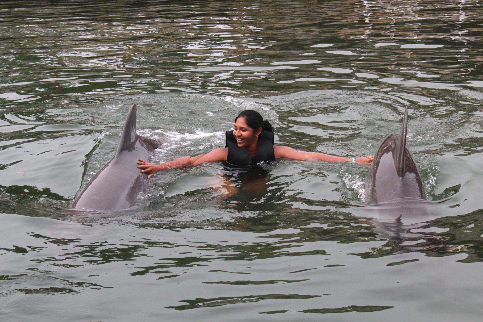 Hema_nager_avec_les_dauphins_dolphin_plus3