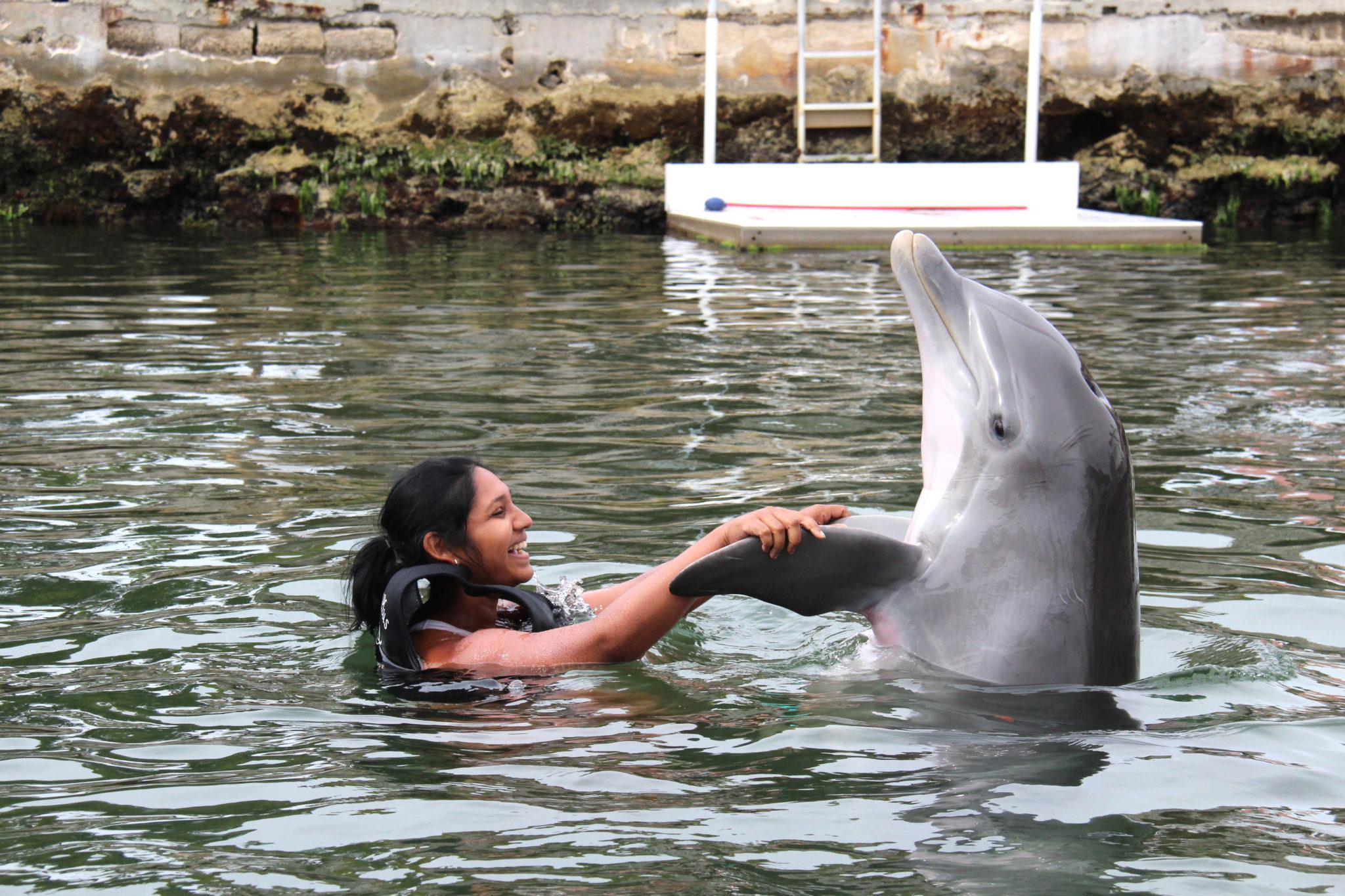 Hema_nager_avec_les_dauphins_dolphin_plus6