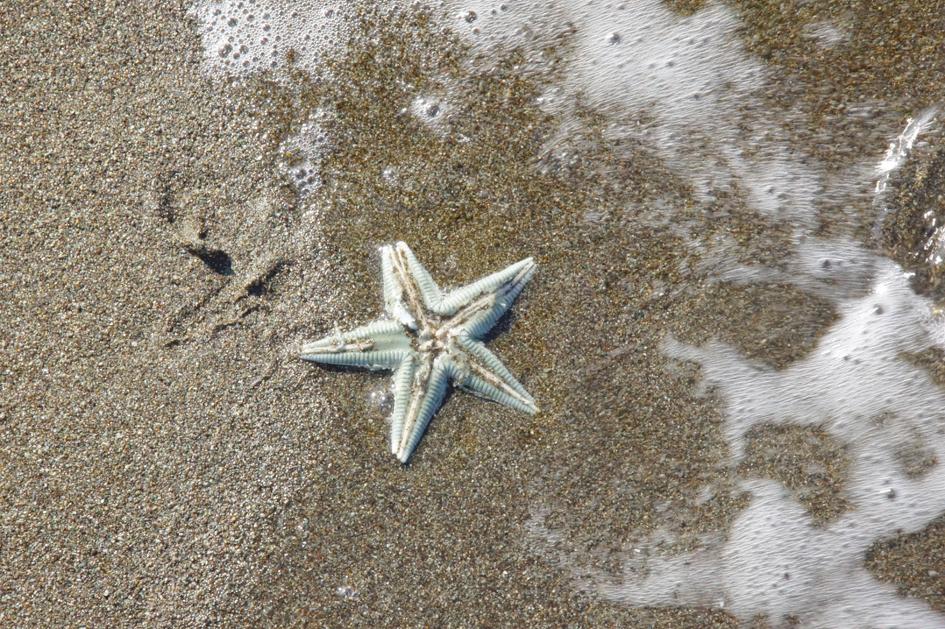hema_cuba_baracoa_beach2