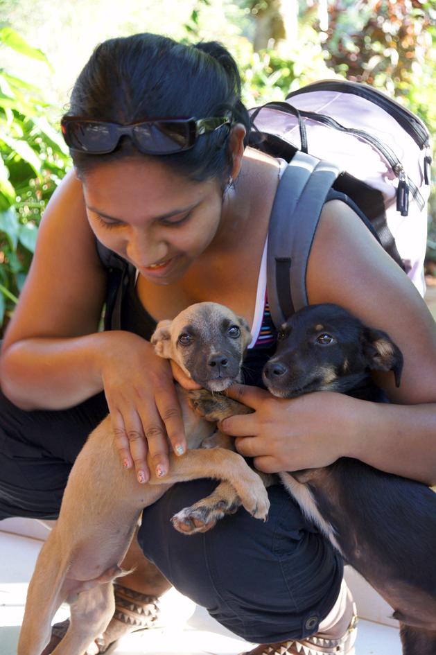 hema_cuba_baracoa_finca_puppy