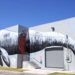 Floride – Miami – Wynwood Walls