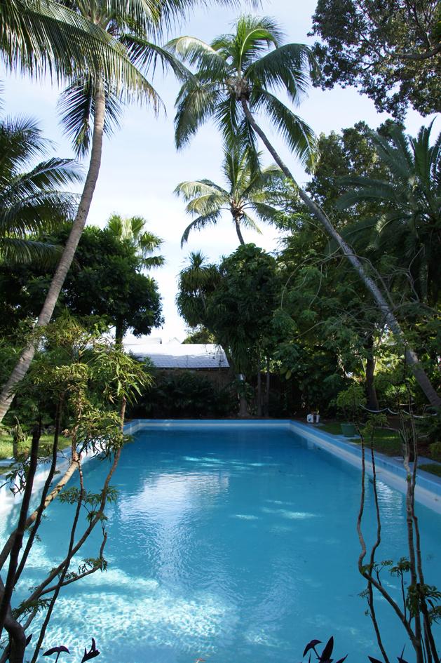 hema_florida_key_west_hemingway_house_swimming_pool
