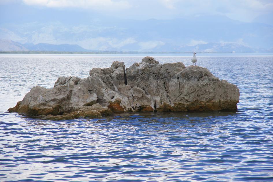 Hema_Montenegro_Virpazar_Lake_Skadar_Seagull_Blog_Voyage_Travel8
