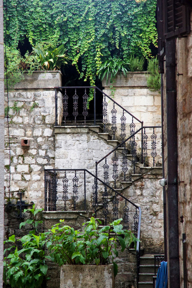 hema_montenegro_kotor_old_city_stairs_nature