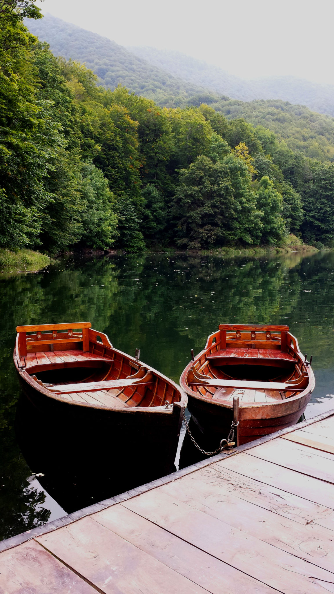 Hema_Montenegro_parc_national_biogradska_gora_forest_travel_voyage_blog1