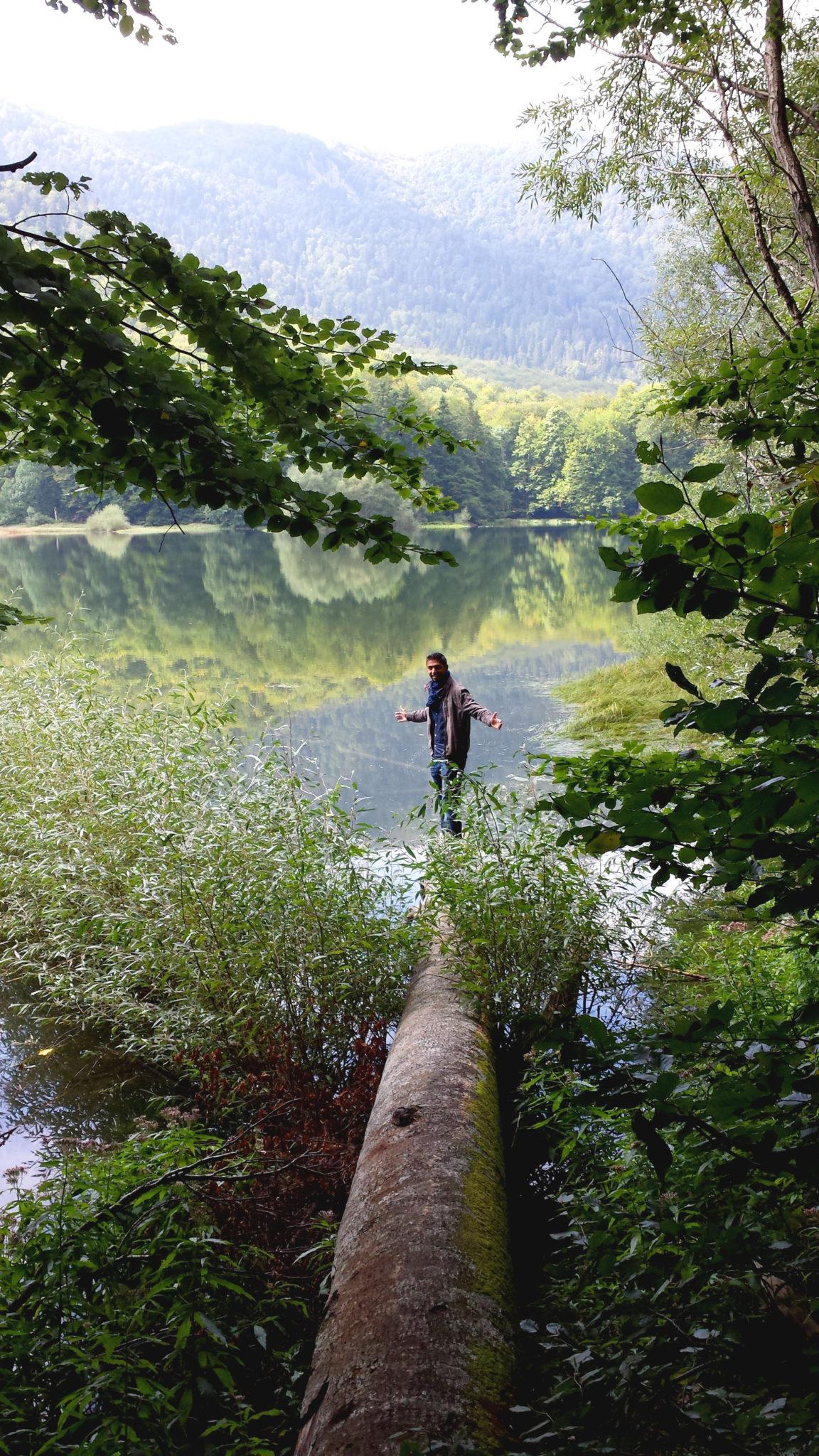 Hema_Montenegro_parc_national_biogradska_gora_forest_travel_voyage_blog18