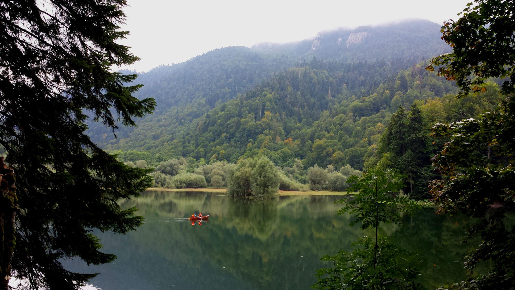 Hema_Montenegro_parc_national_biogradska_gora_forest_travel_voyage_blog6