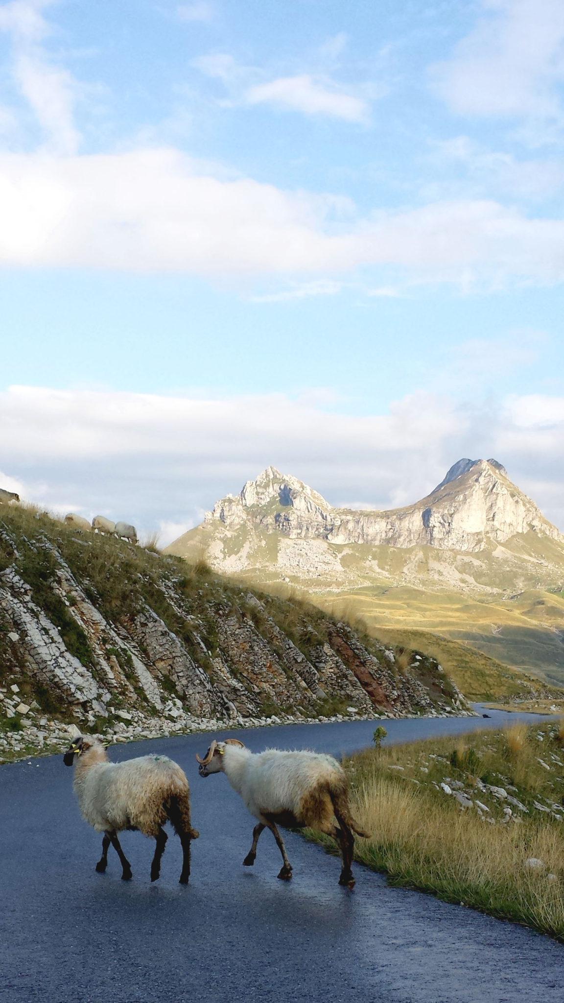 Hemaposesesvalises_vers_le_parc_de_durmitor_trsa_travel_voyage_blog14