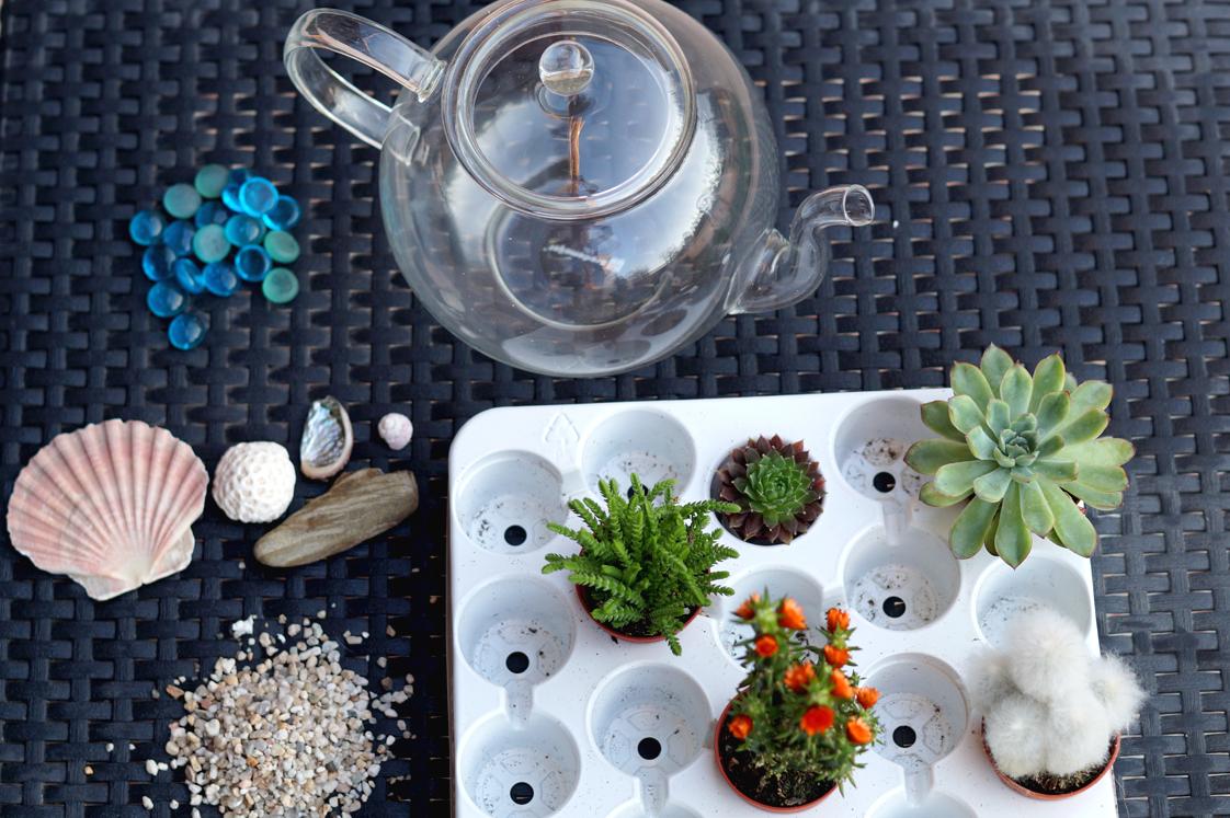 Hema_pose_ses_valises_jardin_d'intérieur_terrarium_theiere_diy_2
