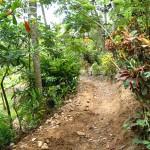 République Dominicaine : Randonnée vers El Limon