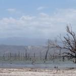 République Dominicaine : Circuit en voiture au Lago Enriquillo