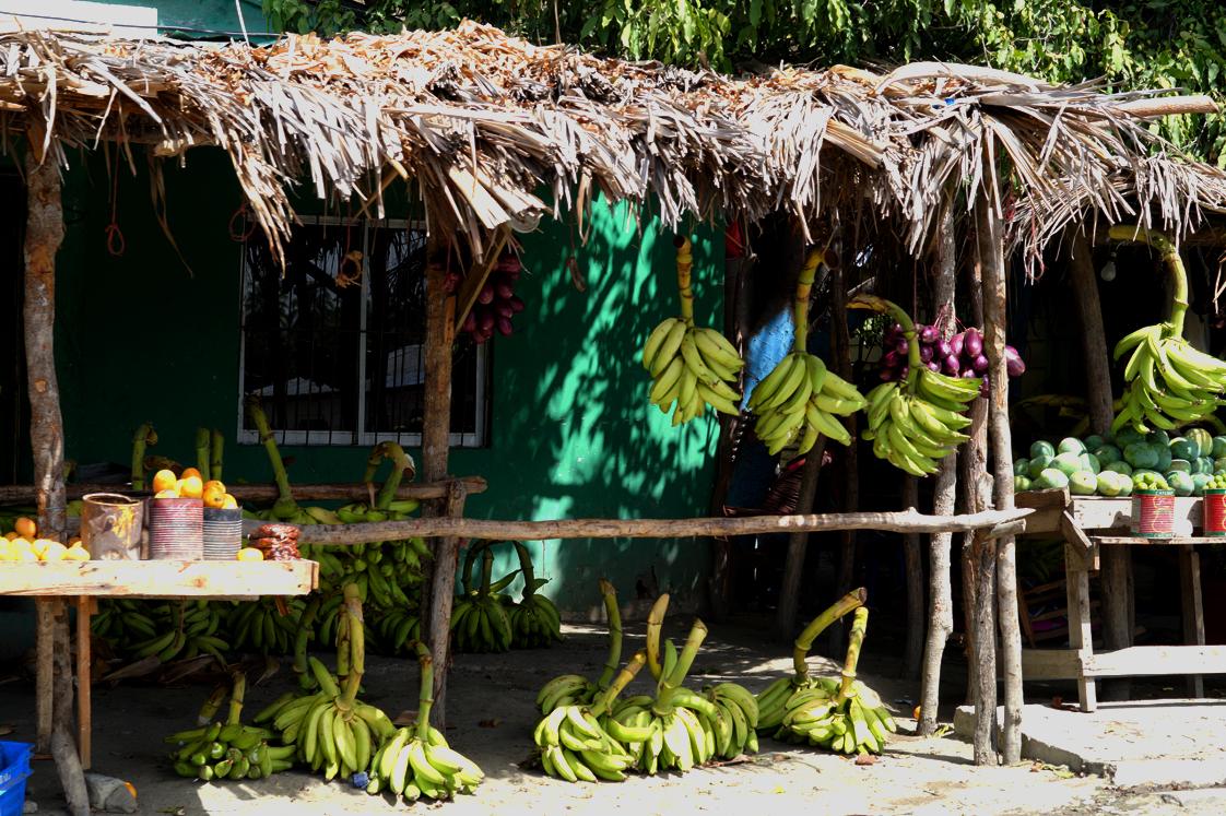 Roadtrip_republique_dominicaine_bananes_echoppe
