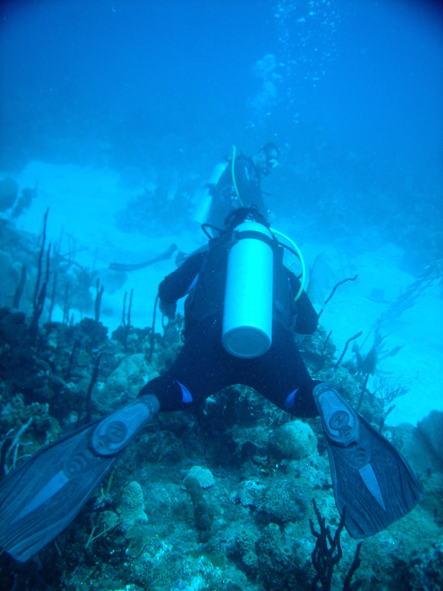 Republique_dominicaine_roadtrip_bayahibe_plongee_scubafun_hema_dominicus_reef