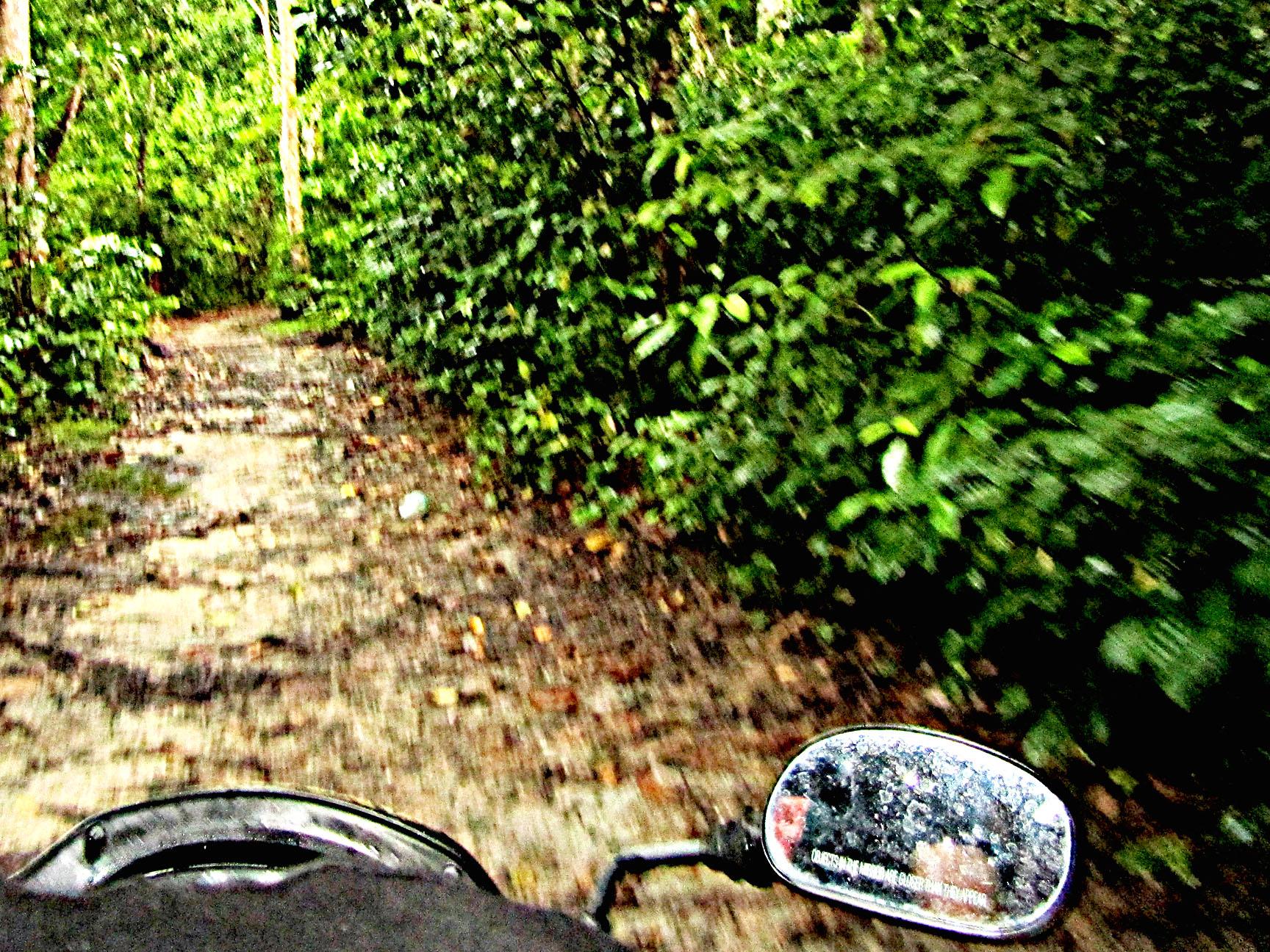 Hema_pose_ses_valises_scooter_andaman_island_inde