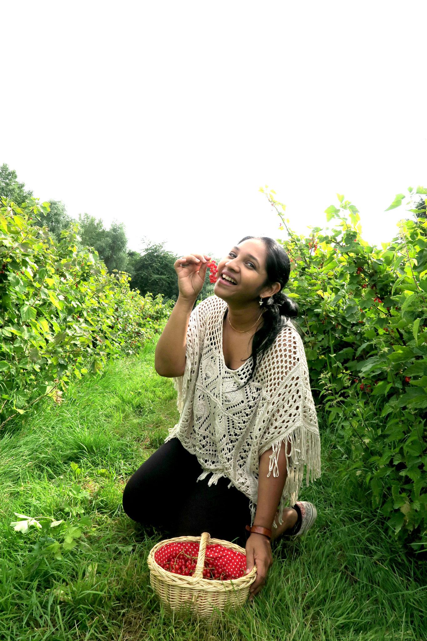 Hema_pose_ses_valises_fermes_de_gally_cueillette_groseille_fruits_gourmandise