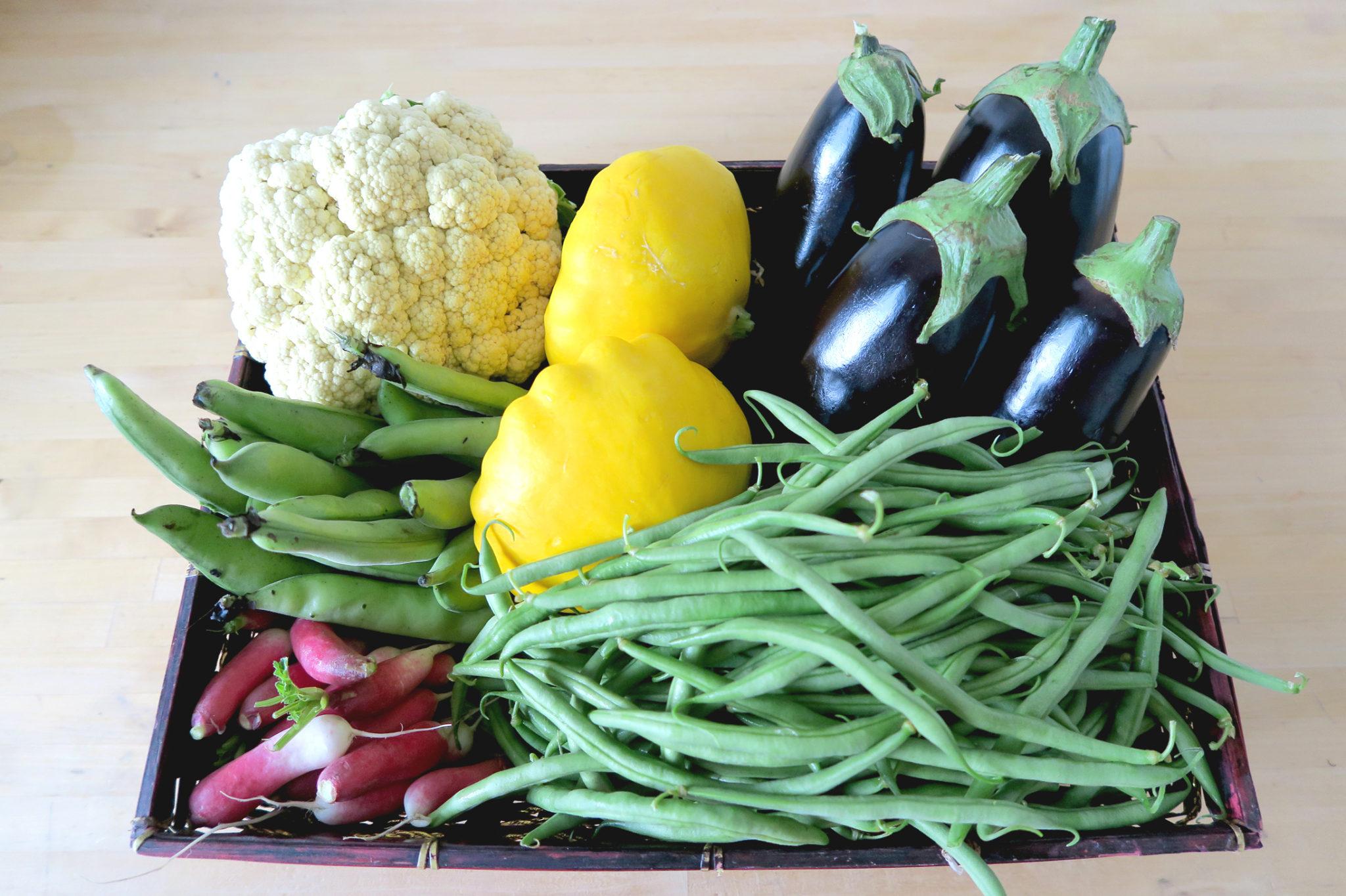 panier de légumes cueillette les fermes de gally