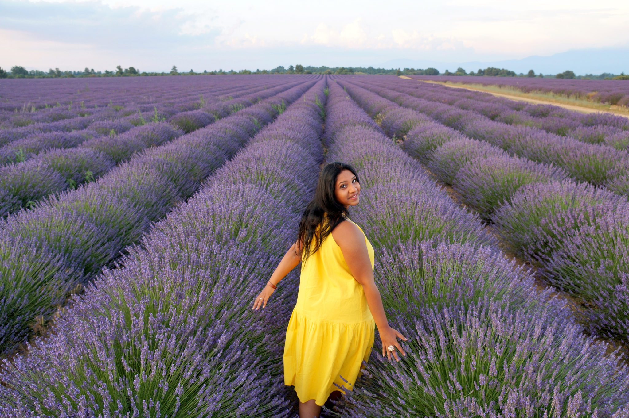 Parfums de Provence : un amour de lavande