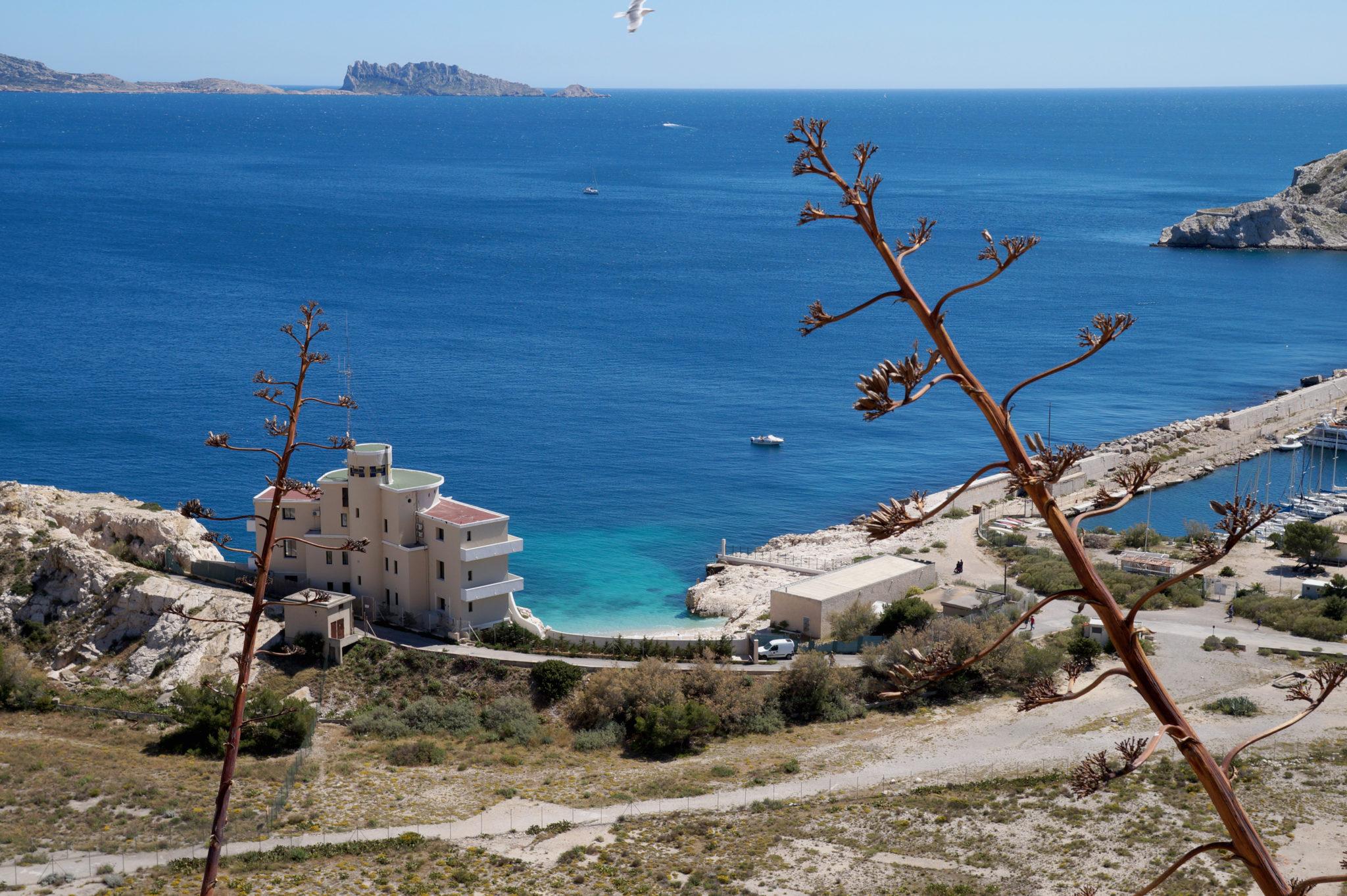 Hema_pose_ses_valises_Marseille_Iles_Frioul_Port_Observation-Ratonneau