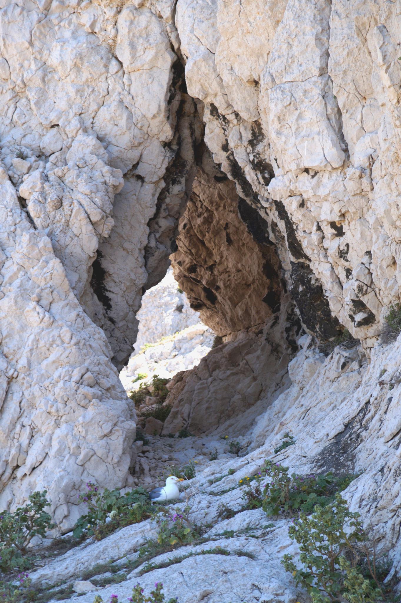 Hema_pose_ses_valises_Marseille_Iles_Frioul_Ratonneau_Grotte