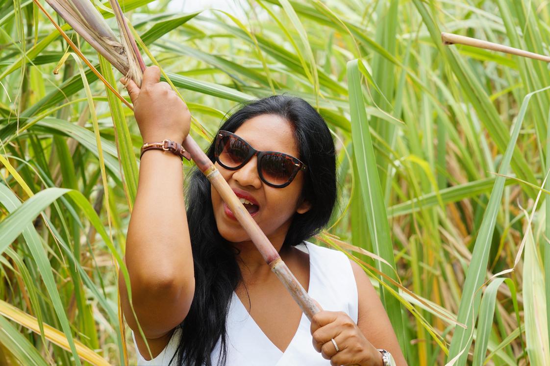 Gouter la canne à sucre à l'Ile Maurice