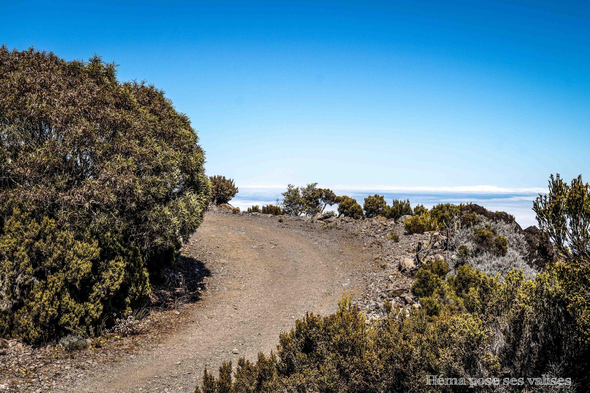 Randonnée du Piton Maïdo vers la Glacière