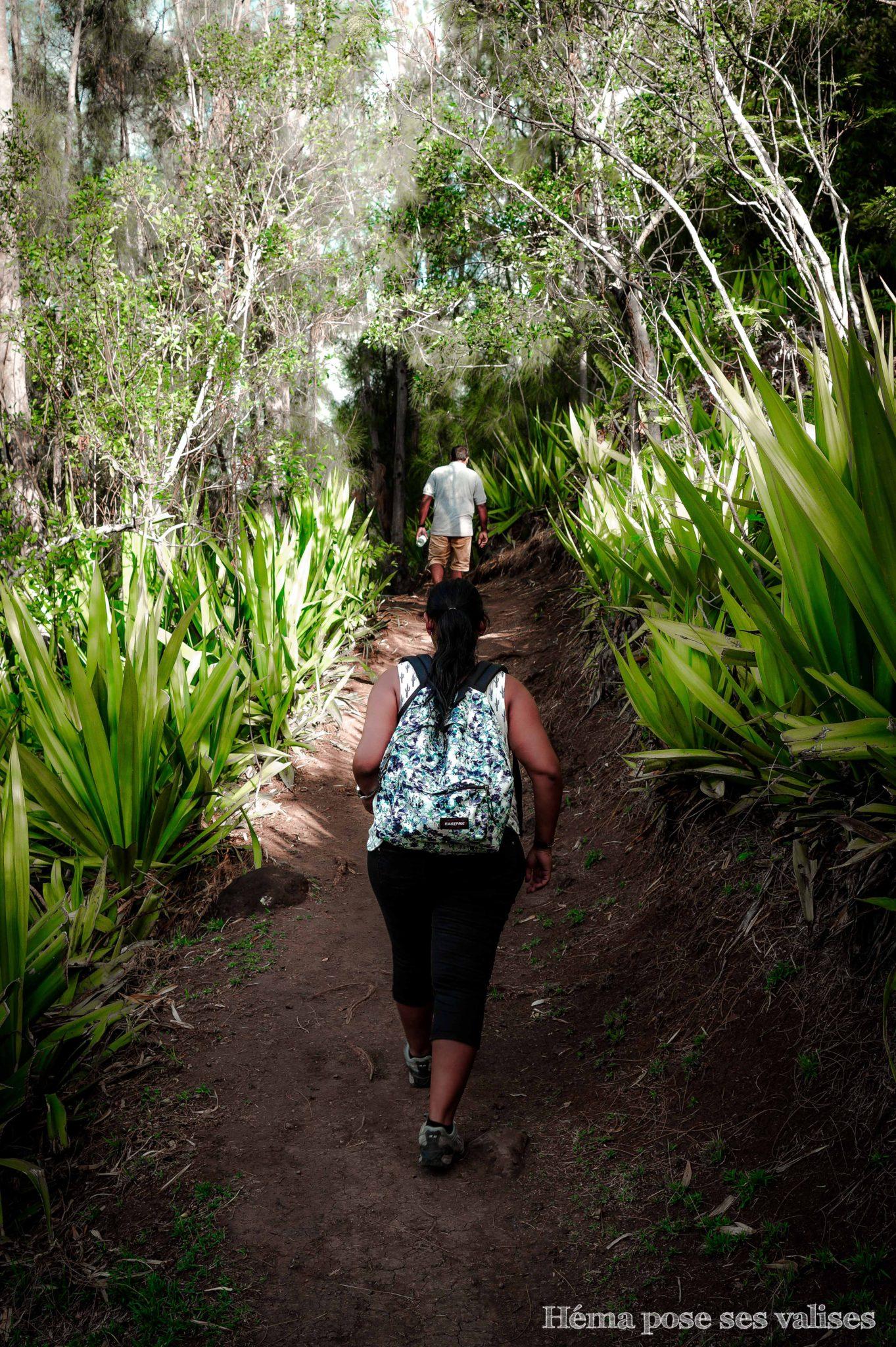 Randonnée Coteau Sec à La Réunion