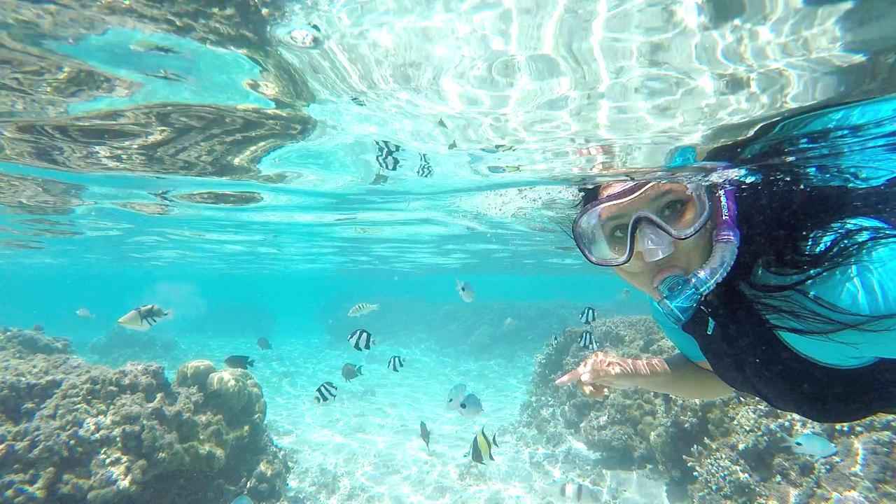 Faire du snorkeling à La Réunion