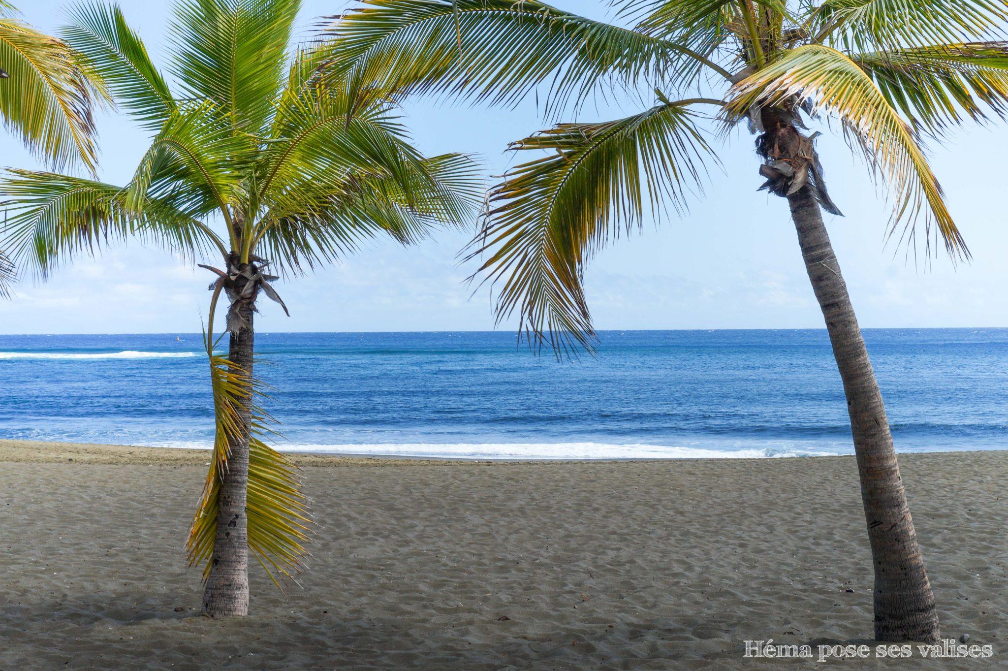 Cocotiers et sable noir à l'Etang-Salé