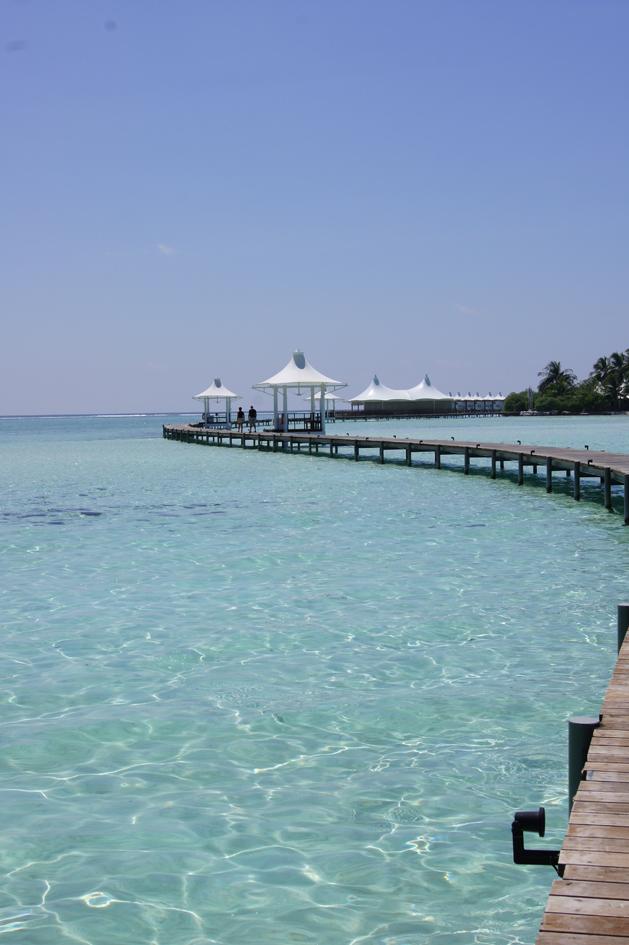 Carnet de voyage : les Maldives